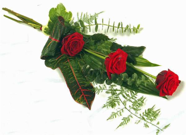 Three rose spray